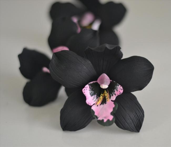 black gumpaste cymbidium orchid